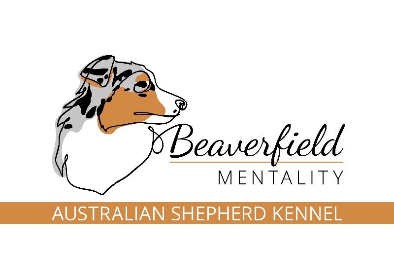 Beaverfield Mentality