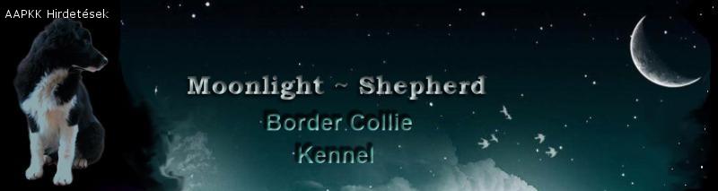 Moonlight-Shepherd